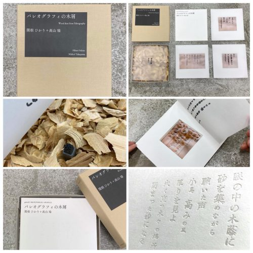 パレオグラフィの木屑 box