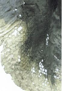 玉川みほの展DM1